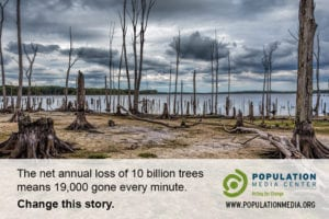Postcard of dead trees with PMC logo, website URL, and caption The net annual loss of 10 billion trees means 19,000 gone every minute. Change this story.